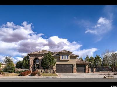 St. George Single Family Home For Sale: 2919 S 2350 St E