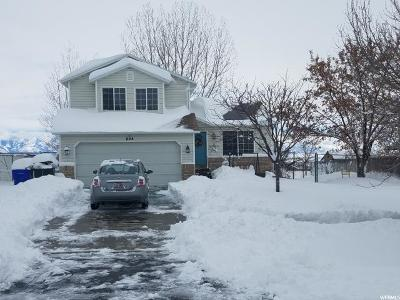 Tooele County Single Family Home For Sale: 895 N 310 E