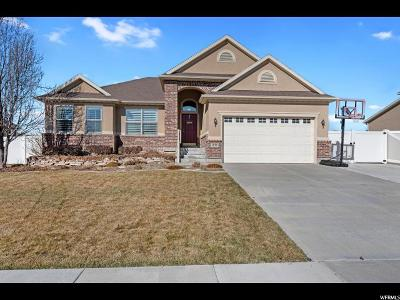 Kaysville Single Family Home For Sale: 1838 Jackson St