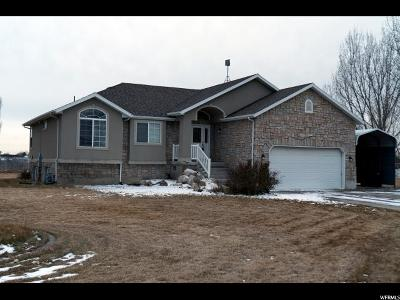 Weber County Single Family Home For Sale: 6227 W 4700 S