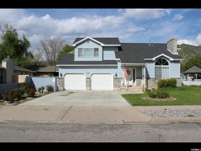 Logan Single Family Home For Sale: 1147 Eastridge Dr