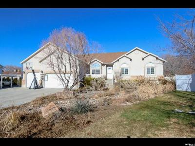 Salt Lake City Single Family Home For Sale: 1774 W Nobility Cir N