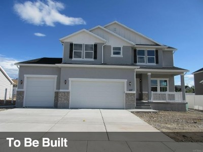 Tooele County Single Family Home For Sale: 234 Tram Rock Rd