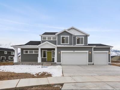 Mapleton Single Family Home For Sale: 455 S Grant St #70