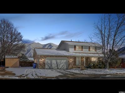 Spanish Fork Single Family Home For Sale: 935 S 1170 E