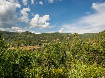 Wasatch County Residential Lots & Land For Sale: 8423 E Lake Pines Dr Dr