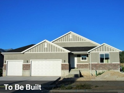 Tooele County Single Family Home For Sale: 2058 E Mine Rock Rd