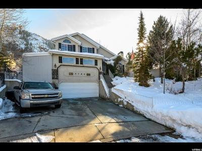 Sandy Single Family Home For Sale: 3744 E Mountain Valley Way