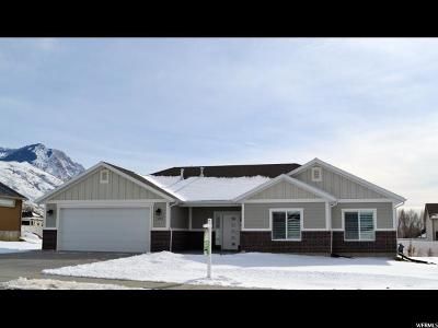 Single Family Home For Sale: 1253 W 3225 S
