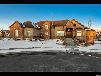 Kaysville Single Family Home Under Contract: 623 Allison Way