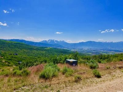 Wasatch County Residential Lots & Land For Sale: 1841 S Ridgeline Dr