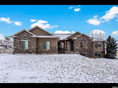 Weber County Single Family Home For Sale: 3196 N 1350 W