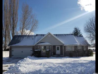 American Fork Single Family Home For Sale: 1004 E 1300 N