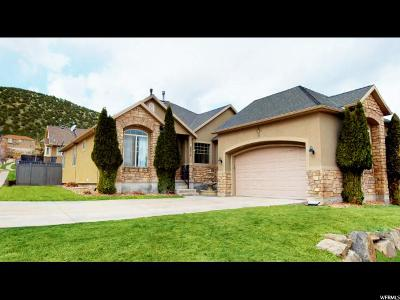 Eagle Mountain Single Family Home For Sale: 6915 N Kiowa Pkwy