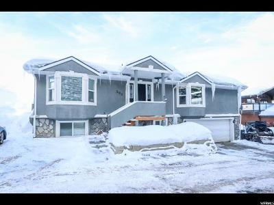 Park City Single Family Home For Sale: 391 Aspen Dr