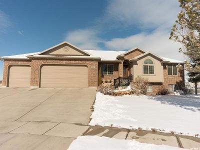 Farmington Single Family Home For Sale: 1418 W 475 S