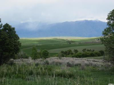 Wellsville Residential Lots & Land For Sale: 3781 W 8500 S