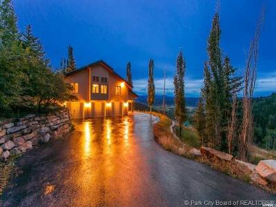 Park City Single Family Home For Sale: 2580 Bear Hollow Ln