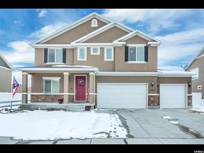 Tooele County Single Family Home For Sale: 5849 N Bleeker St W