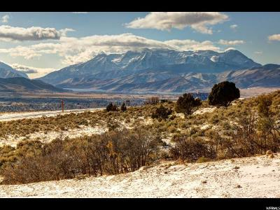 Wasatch County Residential Lots & Land For Sale: 1433 N A1 Peak Dr (Lot 479)