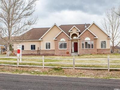 Eagle Mountain Single Family Home For Sale: 9776 N Oquirrh View Drive Dr