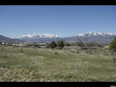 Wasatch County Residential Lots & Land For Sale: 2433 E 70 S
