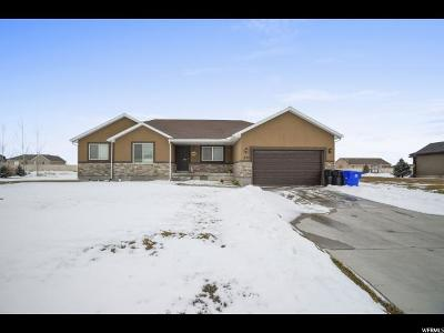 Tooele County Single Family Home For Sale: 832 E Deep Wash Rd S