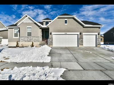 Tooele County Single Family Home For Sale: 5998 N Elizabeth St W