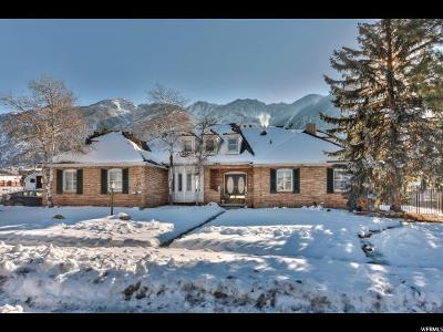 Sandy Single Family Home For Sale: 11613 S High Mountain Dr