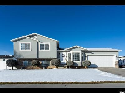 Spanish Fork Single Family Home For Sale: 2397 E 1370 S