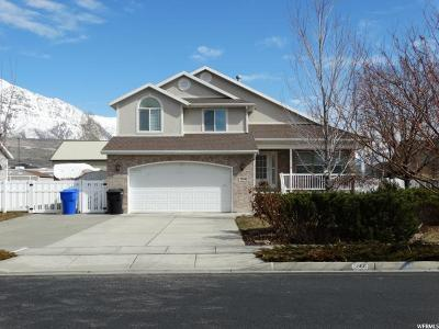 Weber County Single Family Home For Sale: 3866 N 2750 W