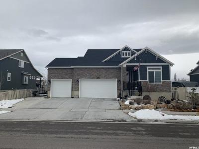 Tooele County Single Family Home For Sale: 233 W Delgada Ln