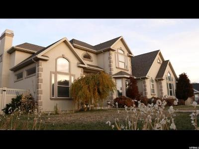 Alpine Single Family Home For Sale: 335 S Wood Dr E