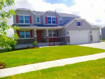 Riverton Single Family Home For Sale: 3791 W Sweet Vera Ln