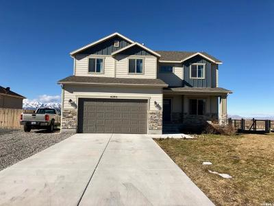 Tooele County Single Family Home For Sale: 4295 N Rose Springs Dr W