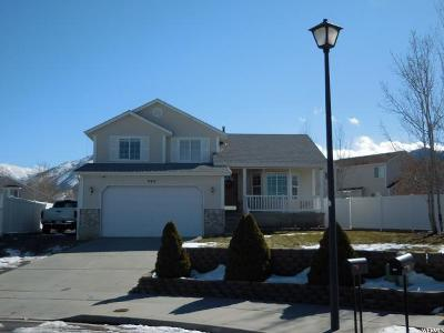Tooele UT Single Family Home For Sale: $275,000