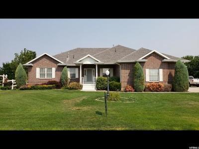 Davis County Single Family Home For Sale: 1481 S 2200 W