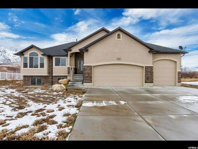 Weber County Single Family Home For Sale: 3916 N 2650 W