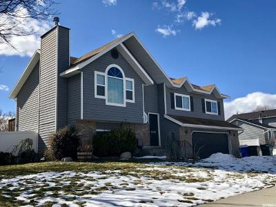 Riverton Single Family Home For Sale: 2039 W Golden Valley Dr
