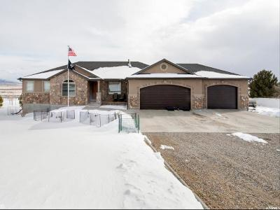 Tooele County Single Family Home For Sale: 2753 Rim Rock Dr.