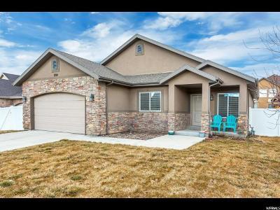 Davis County Single Family Home For Sale: 1924 W 2260 S