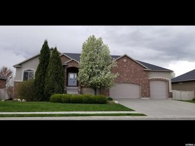 Weber County Single Family Home For Sale: 3687 S 3600 W