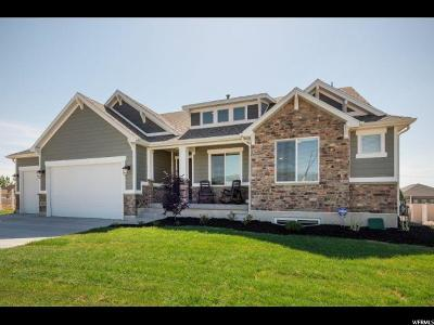Weber County Single Family Home For Sale: 2487 N 2825 W #45