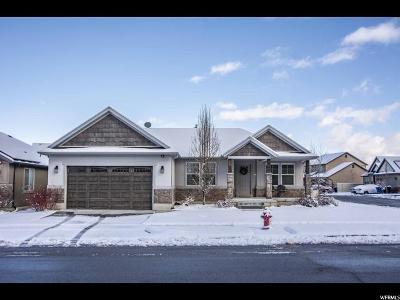 Payson Single Family Home For Sale: 545 E Canyon Rd