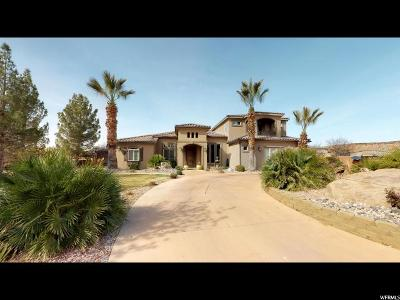 St. George Single Family Home For Sale: 2896 S Ledge Rock Cir
