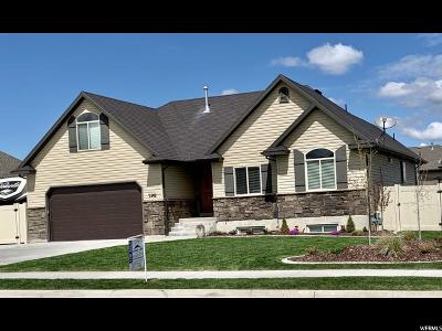 Tremonton Single Family Home For Sale: 798 W 525 S