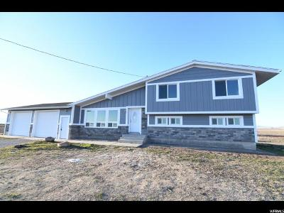 Tremonton Single Family Home For Sale: 5354 W 6800 N