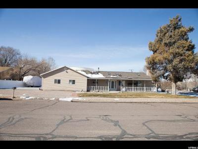 Delta Single Family Home For Sale: 54 S 300 W