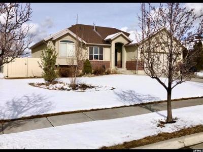 Davis County Single Family Home For Sale: 2714 W 2025 N