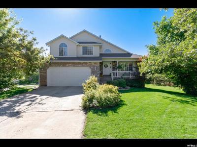 Davis County Single Family Home For Sale: 2538 E 3750 N